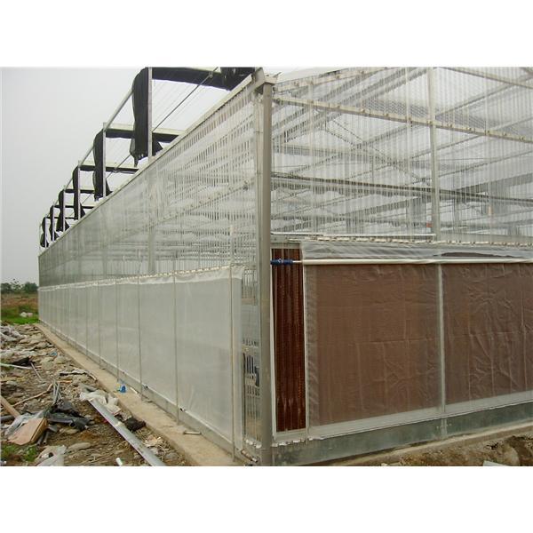 溫室環境規劃-綠能溫室工程有限公司