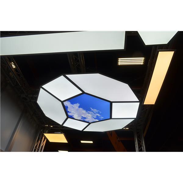 IBIS 客製化幾何奈米導光照明-思鷺科技股份有限公司