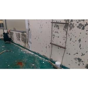 外牆拉皮翻新 女兒牆防水防漏工程 - 宅美油漆防水工程