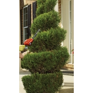 園藝修剪 - 東昇清潔工程有限公司