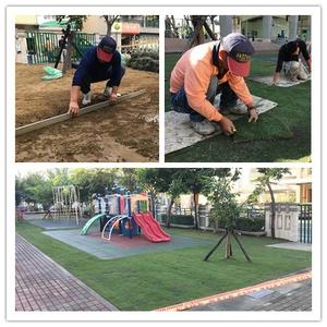 草皮種植 - 品誠塗裝防水專業建材