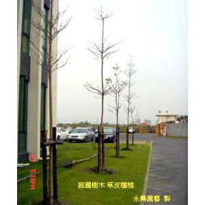 庭園樹木草皮種植 - 永興園藝有限公司