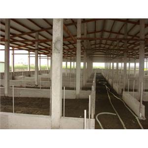 畜牧寮舍施工照-溫發水泥製品加工廠