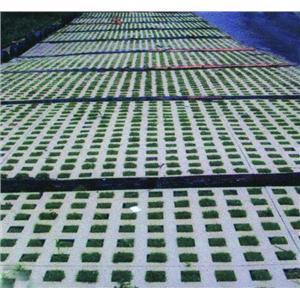 草皮砖 网页游戏超市 高清图片