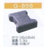 G-856