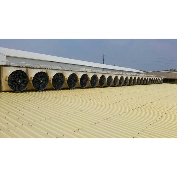 屋頂氣樓式負壓排風降溫