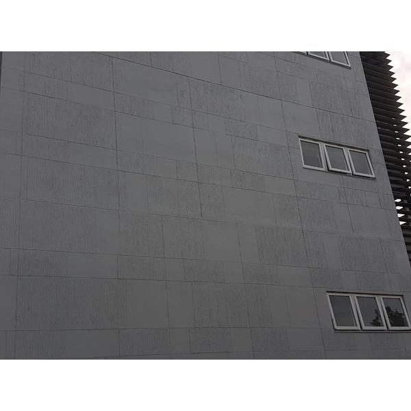 成功大學外牆幻影塗料